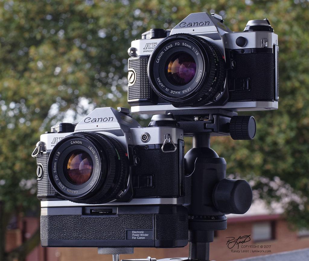 2 Canon AE-1 Programs w/ Canon FDn 50mm f/1.8